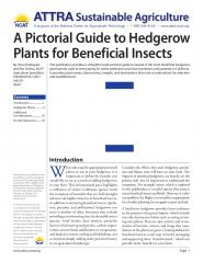 A Pictorial Guide to Hedgerow Plants for Beneficial Insects.jpg