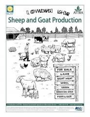 An Illustrated Guide to Sheep and Goat Production.jpg