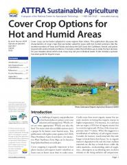 Cover Crop Options for Hot and Humid Areas.jpg