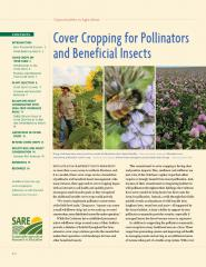 Cover Cropping for Pollinators and Beneficial Insects.jpg