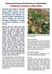 Enhancing_Cowpea_Productivity_for_Sustainable_Livelihoods_of_Farmers_in_West_Africa.jpg